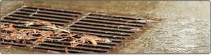 Exeter unblocks blocked drains